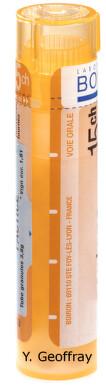 HEPAR SULFURIS CALCAREUM gra 1x4 g (15CH)