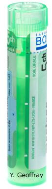 HEPAR SULFURIS CALCAREUM gra 1x4 g (5CH)