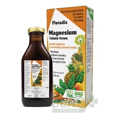 SALUS Floradix Magnesium 250ml