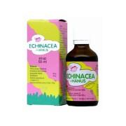 HANUS Echinacea sirup detský 50 ml