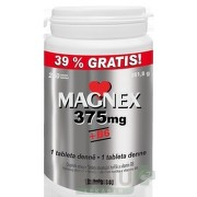 Vitabalans MAGNEX 375 mg + B6 tbl 1x250 ks tbl 250x375mg