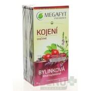 MEGAFYT Bylinková lekáreň dojčenie 20 x 1,5 g
