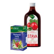 LEROS ŠŤAVA Šípka+4 byliny + Natur Prechladnutie 1set