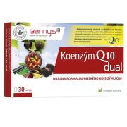 BARNY'S Koenzým Q10 dual 60 mg cps mol 30x60mg