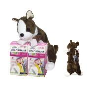 DELTA COLOSTRUM sirup JAHODA KIDS DUO 2x125 ml + darček plyšový psík