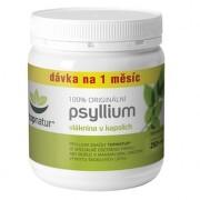 TOPNATUR Psyllium vláknina 250 kapsúl
