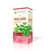 MEGAFYT Bylinková lekáreň ostružina malinová 20 x 1,5 g