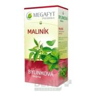 MEGAFYT Bylinková lekáreň OSTRUŽINA MALINOVÁ 20x1,5g