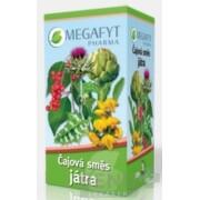 MEGAFYT Bylinná zmes PEČEŇ 20x1,5g