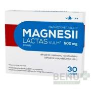 MAGNESII LACTAS VULM 500 mg 1x30 ks tbl 30