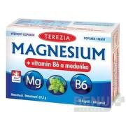 TEREZIA MAGNESIUM + vitamin B6 a meduňka cps 30
