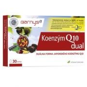 BARNY'S Koenzým Q10 dual 60 mg 30 kapsúl