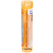 GELSEMIUM SEMPERVIRENS gra 1x4 g (15CH)