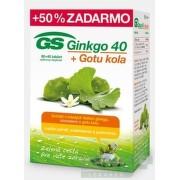 GS Ginkgo  + Gotu kola 80+40 tbl. zadarmo (120 ks) tbl 80+40