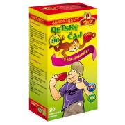 AGROKARPATY Detský čaj na imunitu 20 x 2 g