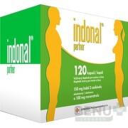 Indonal partner cps 1x120 ks cps 120