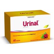 URINAL 60 kapsúl